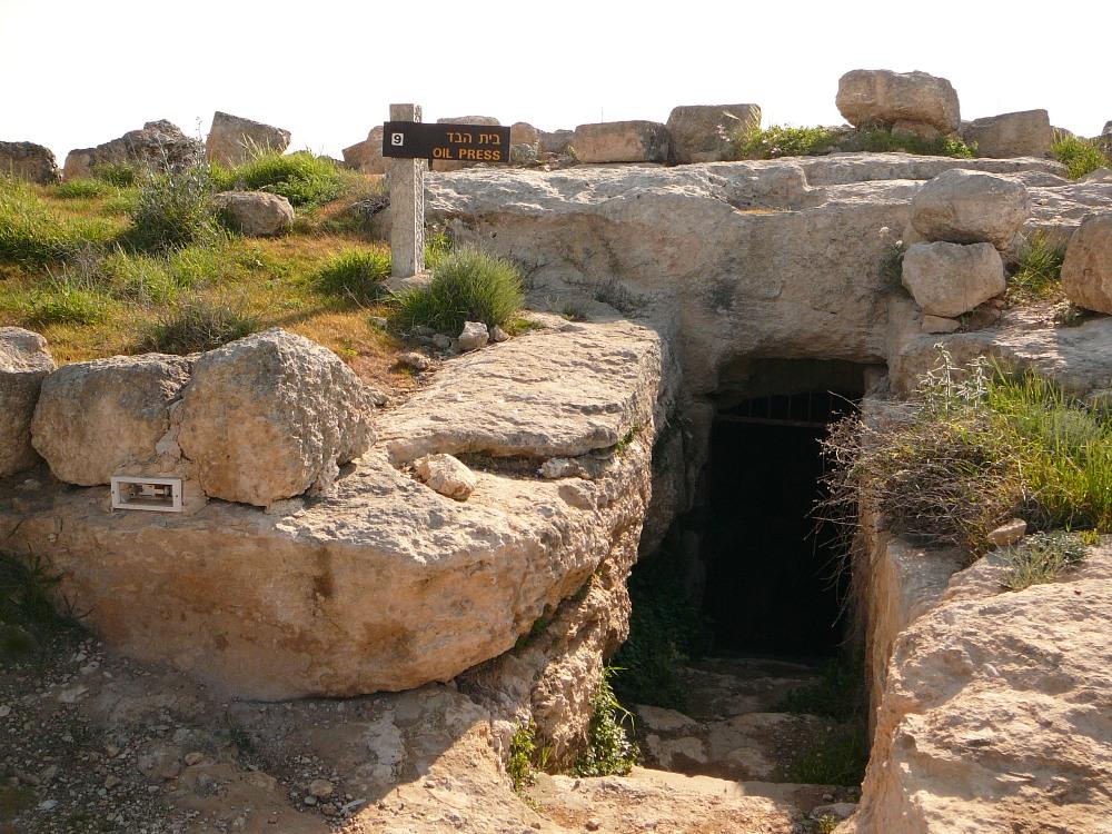 Вход в маслодавильню в Сусие