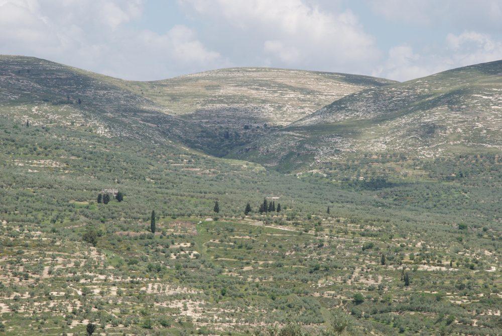 Склоны Горы Эйваль - к востоку от кургана Шомрона