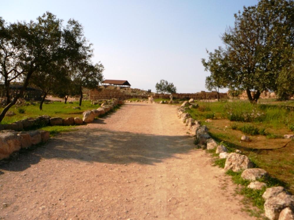Дорога в Сусию