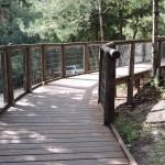 Пешеходная тропа в лесу, ущелье Судьи