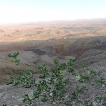 Зуган на горе Саароним, кратер Рамон