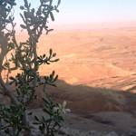 Зуган на фоне кратера Рамон