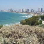 Побережье Тель-Авива - вид с Яффо