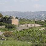 На горе Артас к северу от поселения Бейт-Эль
