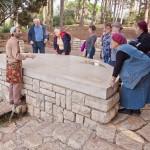 Экскурсия в садах барона Ротшильда