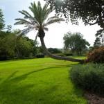 Сады барона Ротшильда - уникальное место для фотолюбителей