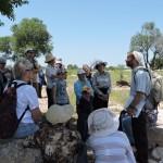 Экскурсия в Шеараим - по следам Давида и Голиафа