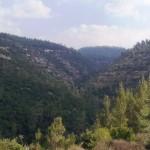 Ущелье Кталав в горах Иерусалима