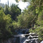 Водопад в Нахаль а-Шофет