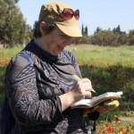 На экскурсии в Негеве - Цветущая пустыня