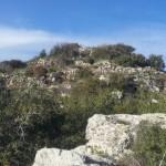 В Иерусалимских горах