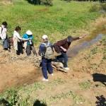 Переход потока Грар в парке Реим, Западный Негев - экскурсия Цветущая пустыня
