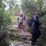 Экскурсия в ущелье Кталав в Иерусалимских горах