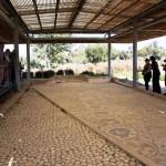 Мозаика древней синагоги Маон в Западном Негеве - экскурсия Цветущая пустыня