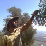 Экскурсия с группой студентов на севере Израиля на горе Кармель
