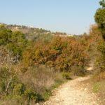 Начало маршрута в ущелье Ягур