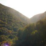 Ущелье Ягур на горе Кармель