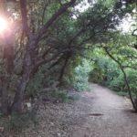Пешеходная тропа на вершине горы Мирон, Верхняя Галилея