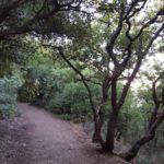 Маршрут на вершине горы Мирон, Верхняя Галилея
