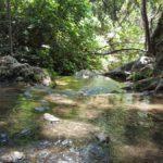 В ущелье Мирон под Цфатом - прохладная вода, бассейны, зеленый покров