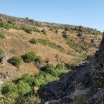 Ущелье Джелабун, Голанские высоты