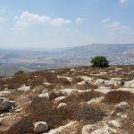 Вид на Шхем с горы Кабир