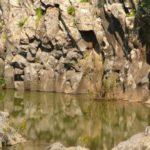 Базальтовые водопады на Голанских высотах