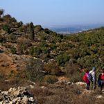 Вид в сторону Иудейской низменности