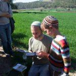 В долине Эла, экскурсия в Иудейской низменности