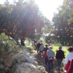 Экскурсия в Хурват Бургин в Иудейской низменности