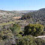 Вид на долину Заноах, Эйн Мата и мошав Мата, горы Иерусалима