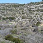 Руины усадьбы крестоносцев возле источника Мата. Экскурсия в горах Иерусалима