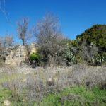 Руины усадьбы крестоносцев возле источника Мата