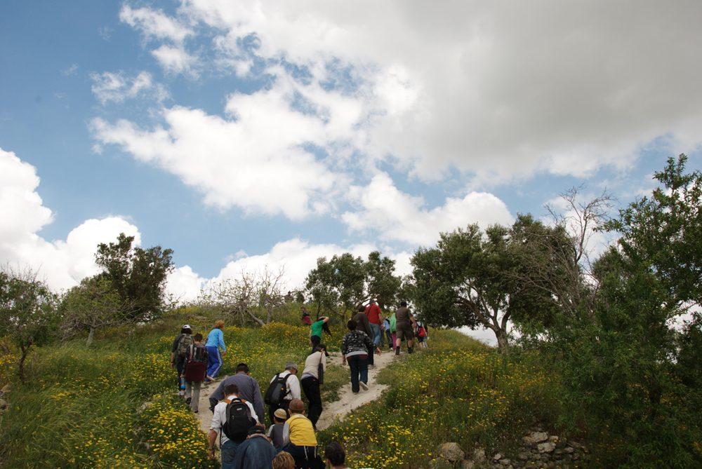 Подъем на акрополь Себастии - древнего Шомрона