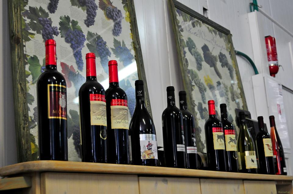 Вино Шило