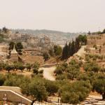 Ущелье Кидрон у подножия Храмовой горы, экскурсии по Иерусалиму
