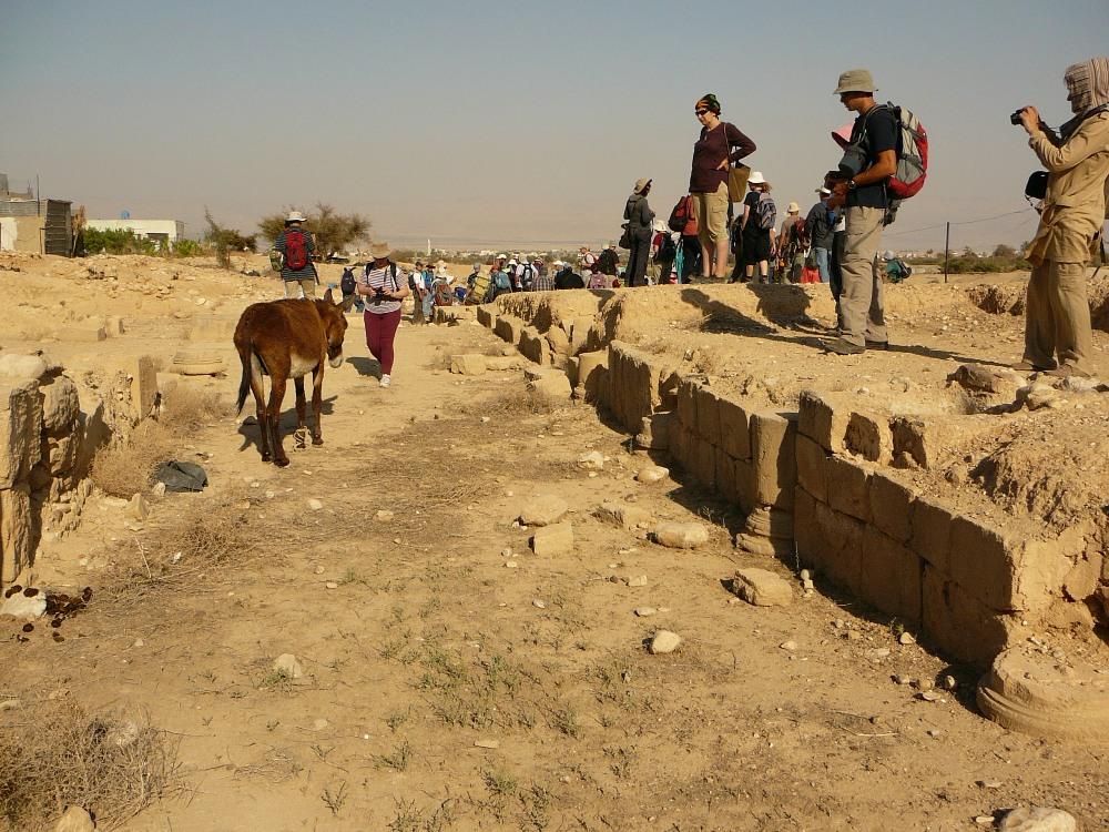 В Йерихо, также как и в других местах, Ирод предпочел стереть следы Хасмонеев, воздвигнув на месте их дворцов свои строения