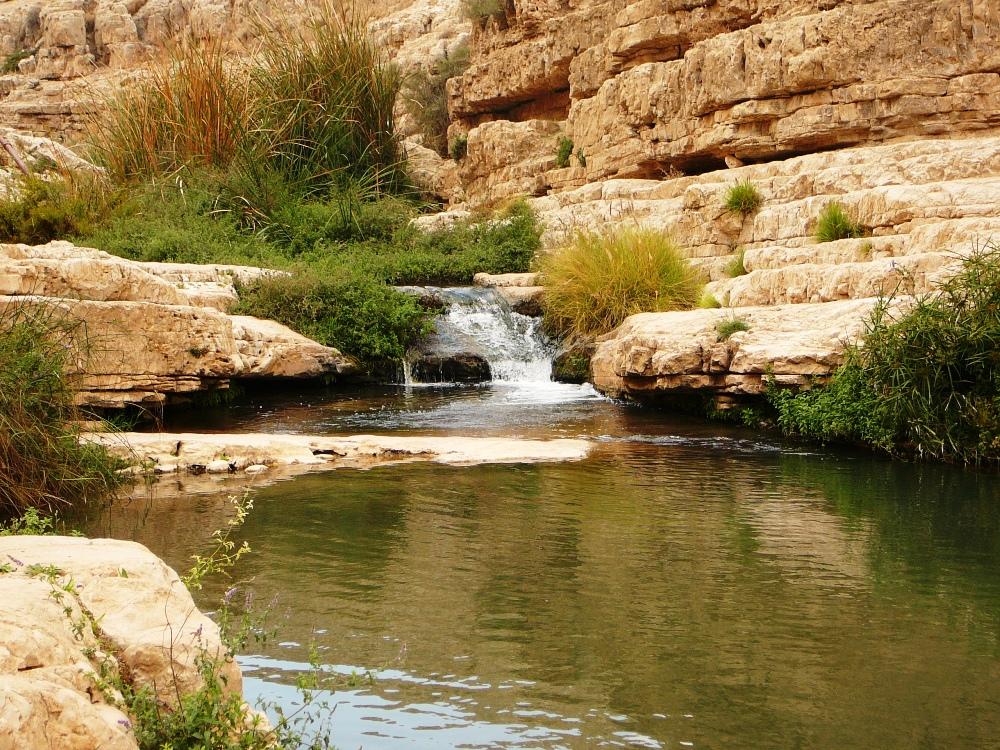 Идеальное место для отдыха в 15-ти минутах езды от Иерусалима