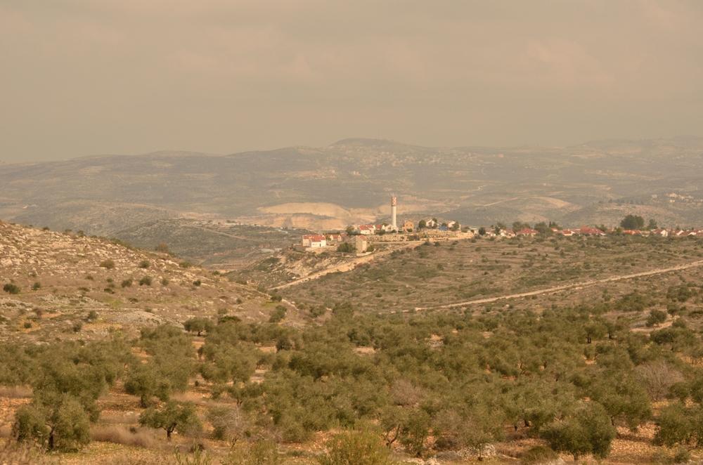 Поселение Эйнав