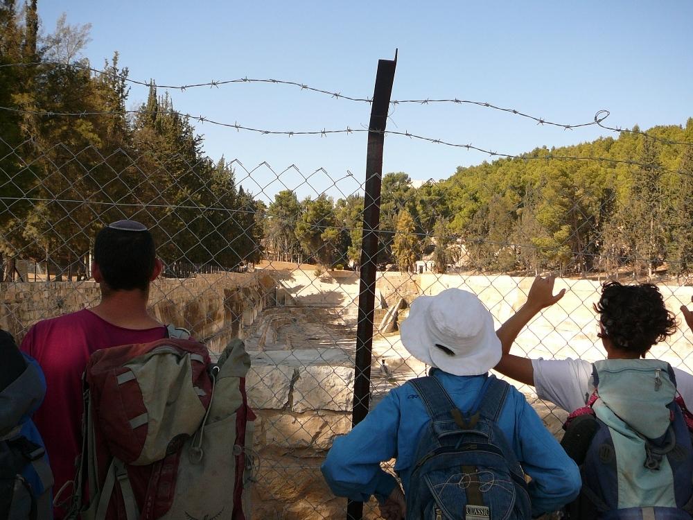 Так выглядит Национальный парк Брейхот Шломо под палестинской властью