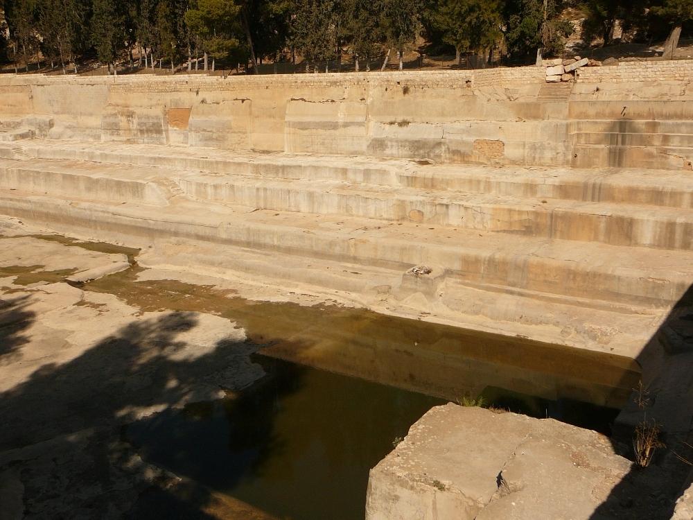 Дно нижнего Бассейна Соломона