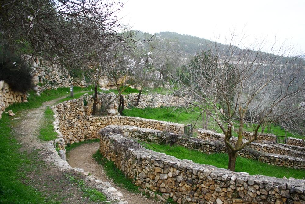 Библейские виды в Иерусалимских горах