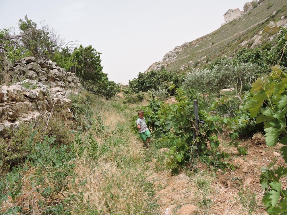 В ущелье Артас, у подножия Эфрата