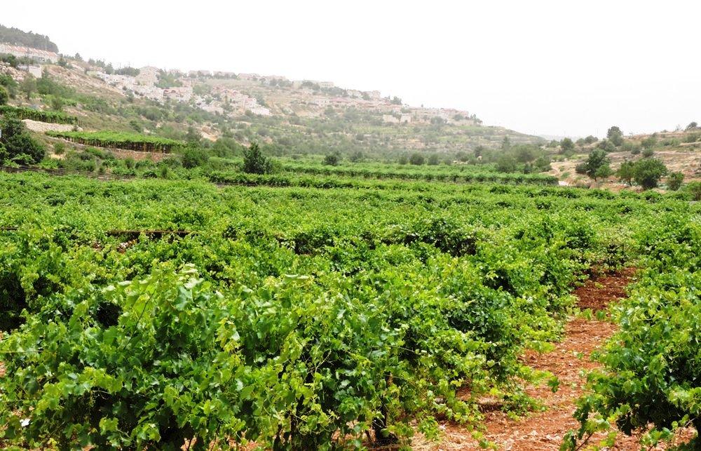 Долина Биар - ущелье шахт