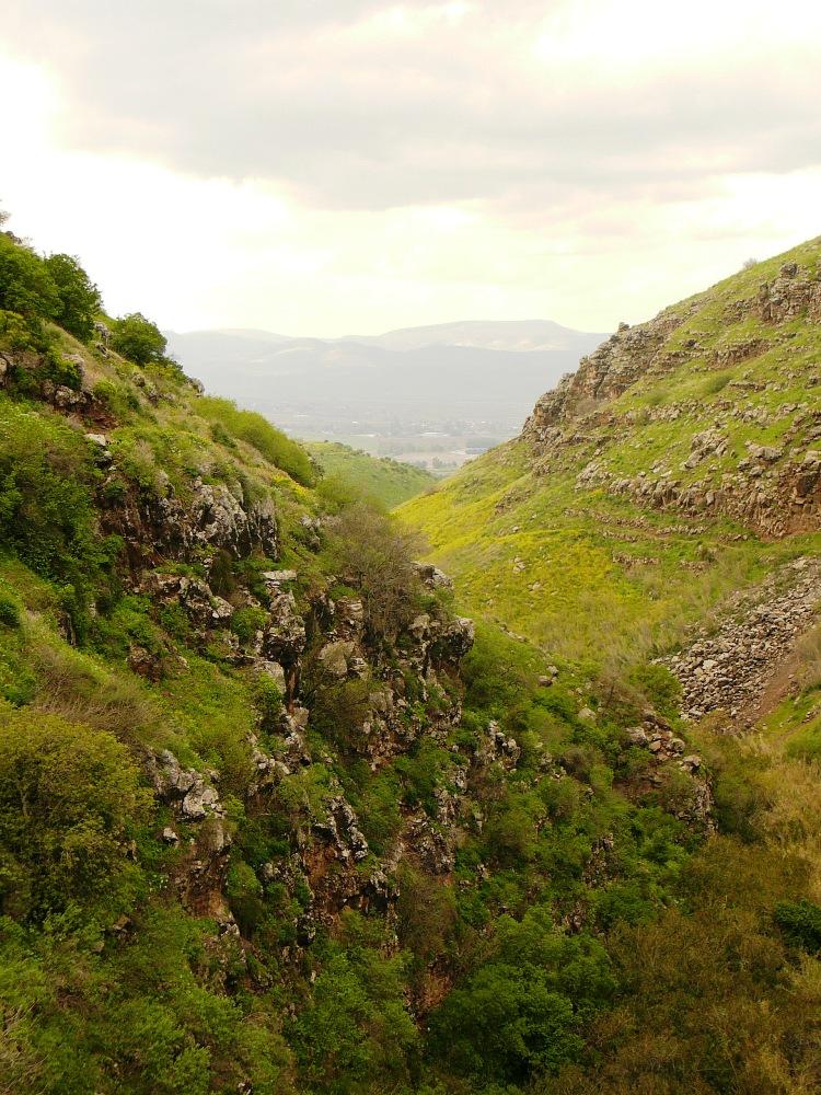 Ущелье реки Двора (Джелабун) - вид на запад