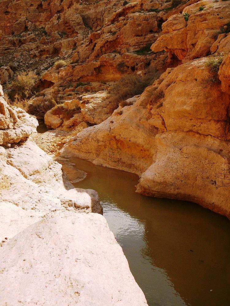 Естественные басейны в ущелье Мамшит после дождей