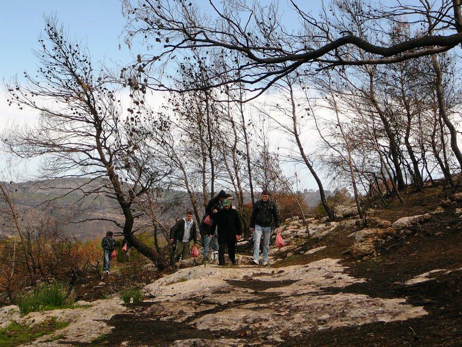 Пешая экскурсия с ребятами из Кфар Ситрина по горе Кармель