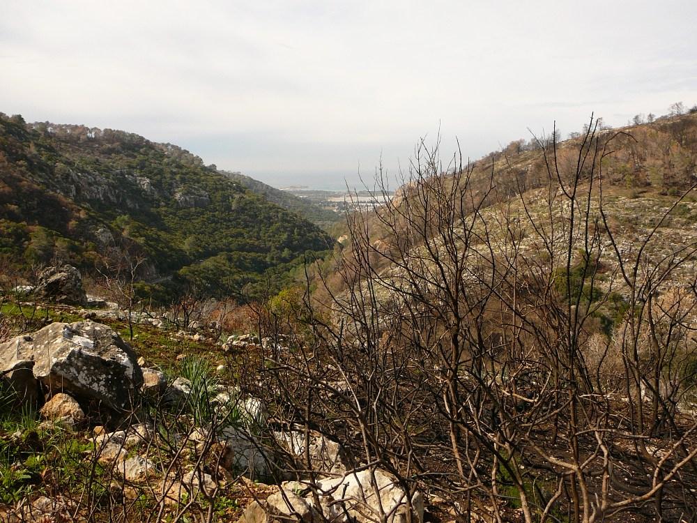 Ущелье Орен - насколько отличаются два склона ущелья Орен