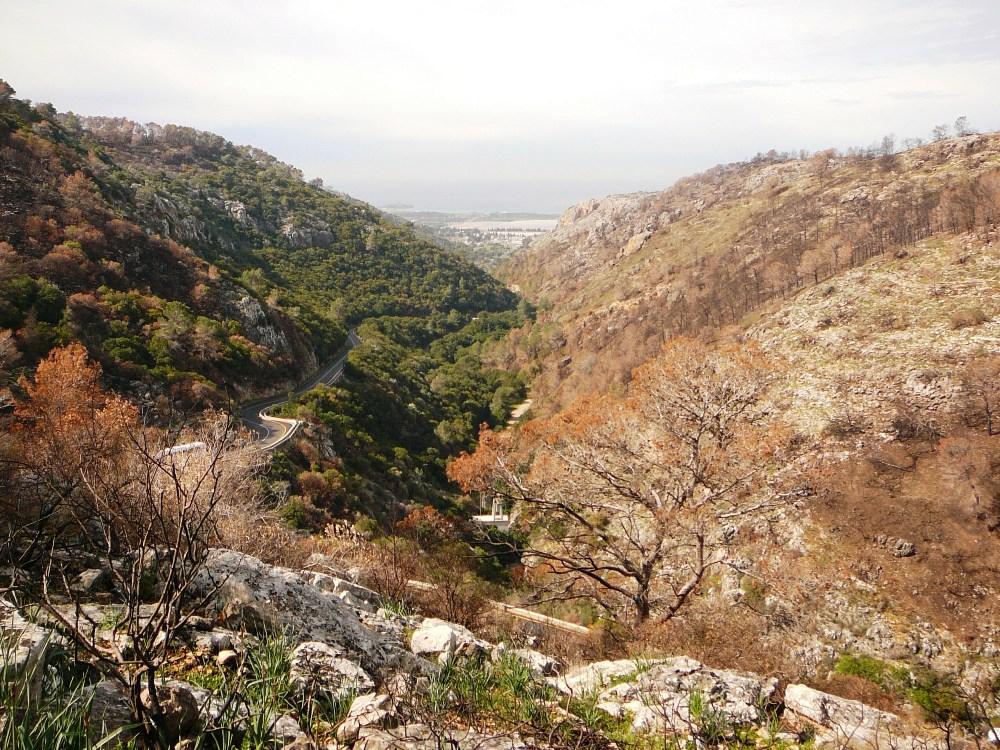 Дорога к кибуцу Бейт Орен, проложенная англичанами 70 лет назад