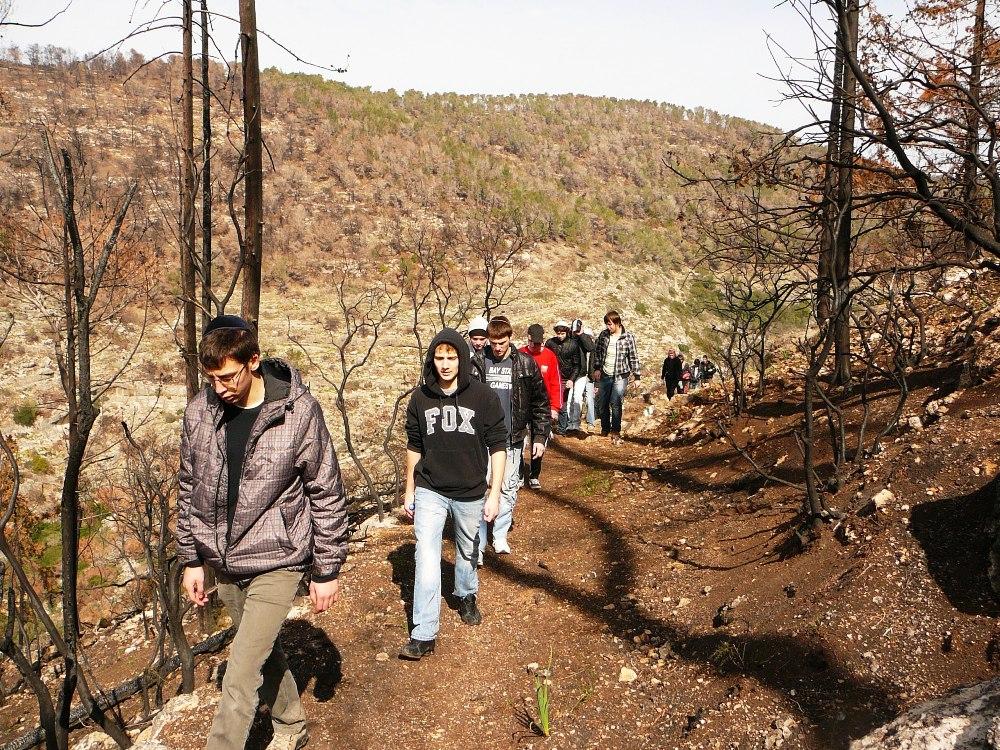 Пешеходная экскурсия по горе Кармель